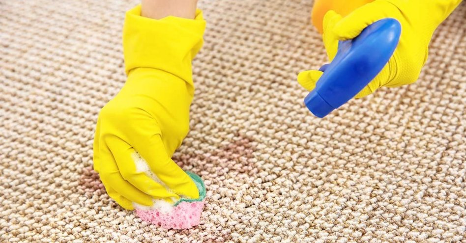 Carpet Cleaning North Hobart