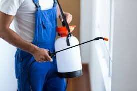 Pest control Pacific Pines