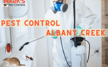 Pest Control Albany Creek