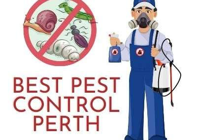 Best Pest Control Perth